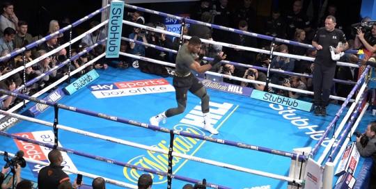 360 webcast sport 360 Live Boxing event live streaming company to film facebook live 360 event wavefx